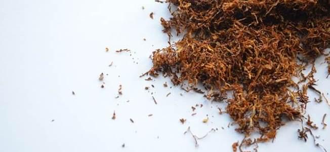 global tobacco